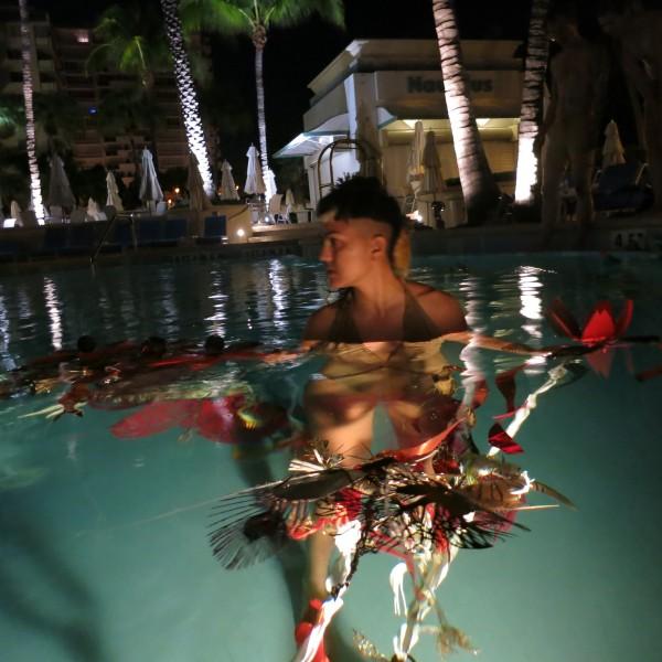 amniotic rare sea miami art basel chandran gallery swoon we came in peace algae loews hotel
